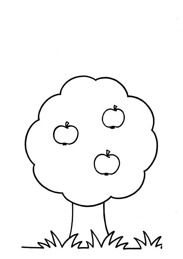 abbastanza 3 4 Anni 5, Disegni per bambini da colorare KF27