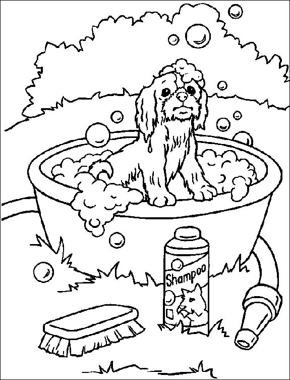 6 7 anni 8 disegni per bambini da colorare for Cucinare per bambini 7 anni