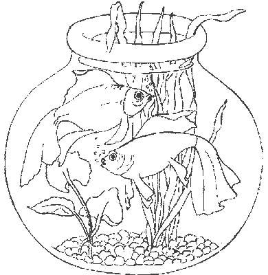 Acquari pesciolini 3 disegni per bambini da colorare for Immagini pesciolini