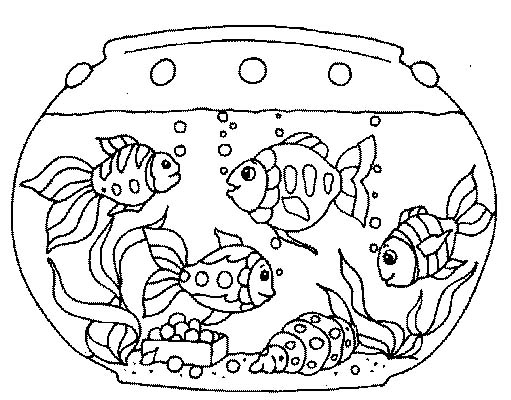 Acquari pesciolini 3 disegni per bambini da colorare for Immagini da colorare di pesci