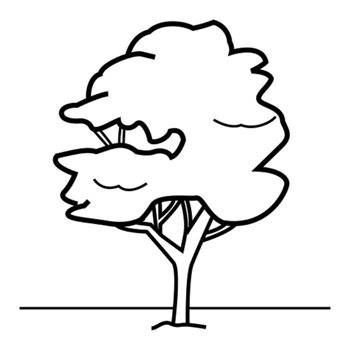 Alberi 5 disegni per bambini da colorare for Foto di alberi da colorare