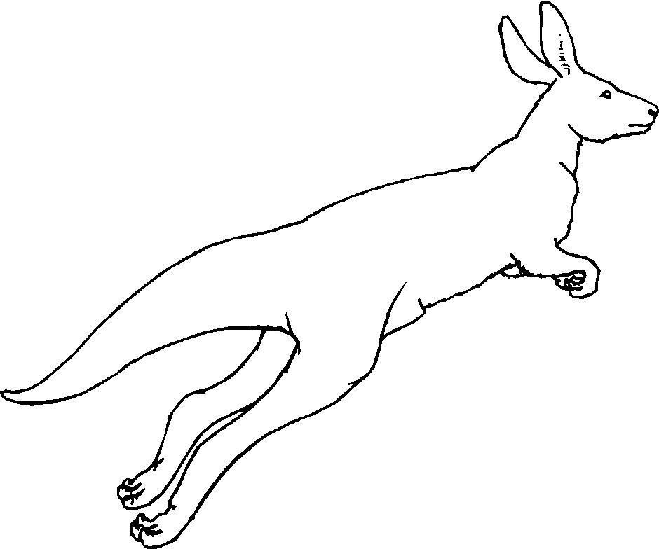 Disegni animali del deserto 2 per bambini da stampare e for Disegni di scantinati di sciopero