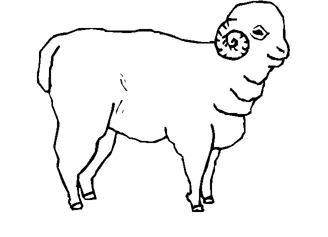 Animali fattoria 6 disegni per bambini da colorare - Pagine da colorare per pecore ...