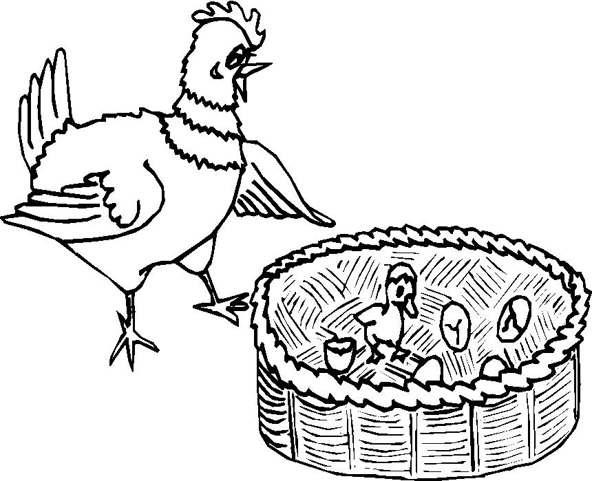 Animali fattoria 14 disegni per bambini da colorare for Fattoria immagini da colorare