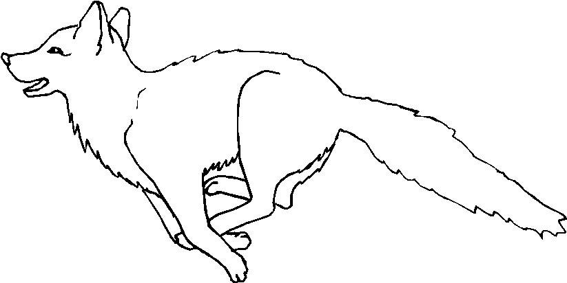 Animali foresta 20 disegni per bambini da colorare - Lupo mannaro immagini da colorare ...