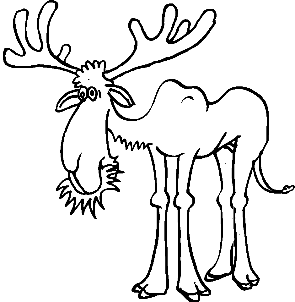 Animali foresta 27 disegni per bambini da colorare for Disegni da colorare animali della foresta