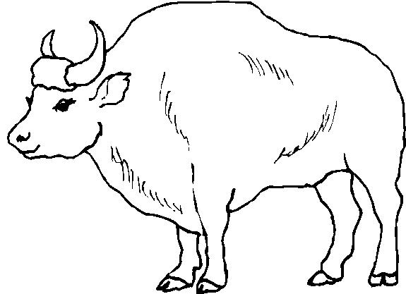 Animali foresta 14 disegni per bambini da colorare - Immagini di aquiloni per colorare ...