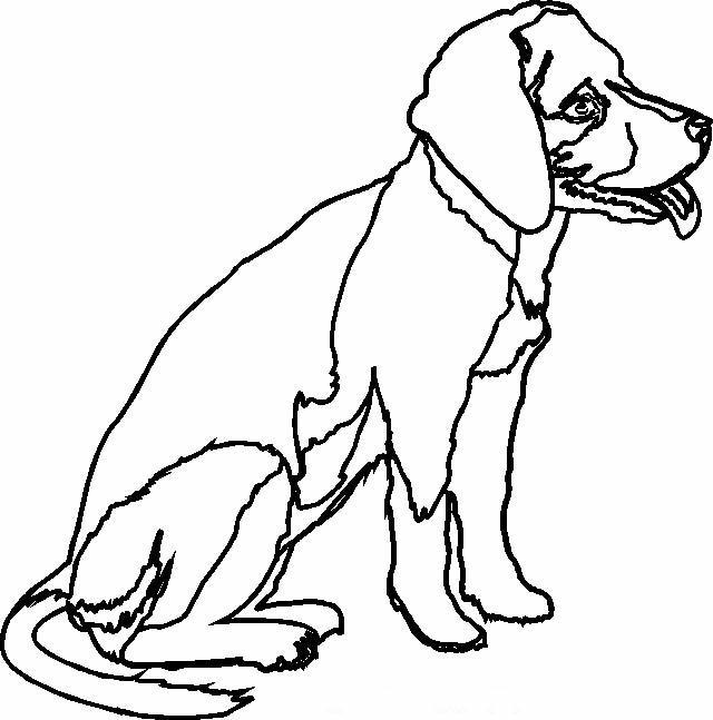 Cani Da Colorare Stampare.Cani Disegni Per Bambini Da Colorare