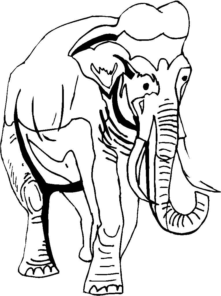 Elefanti 9 disegni per bambini da colorare - Ragazzi da colorare in immagini ...