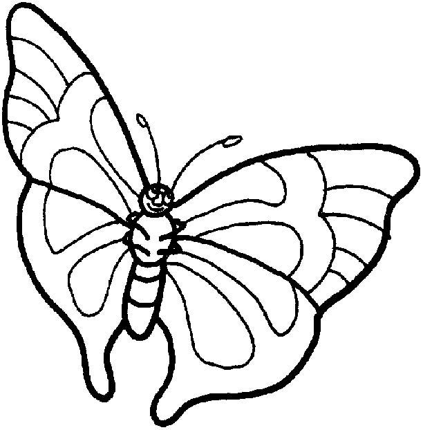 Farfalle disegni per bambini da colorare for Disegnare progetti online