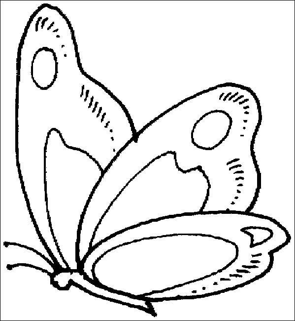 Farfalle 6 Disegni Per Bambini Da Colorare