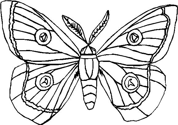 Farfalle 6 disegni per bambini da colorare for Arcobaleno da colorare per bambini