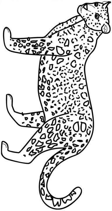 Felini disegni per bambini da colorare for Immagini tigre da colorare
