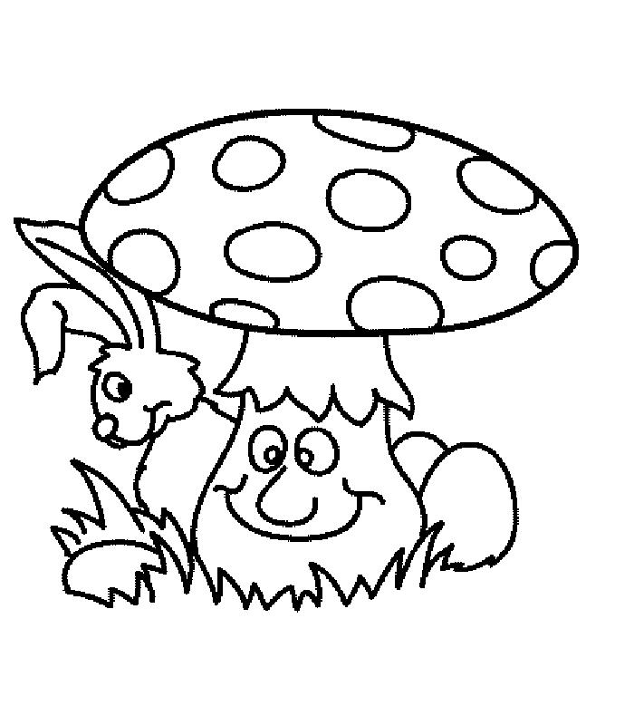 Funghi disegni per bambini da colorare for Fungo da colorare per bambini