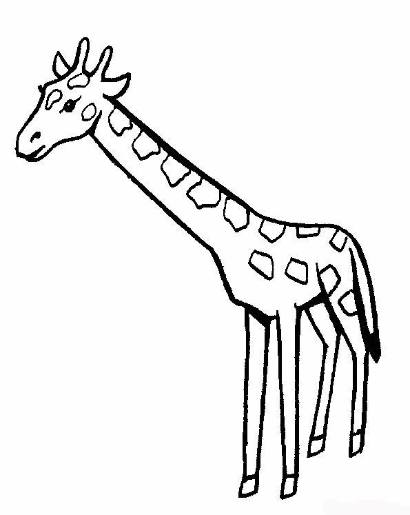 Giraffa disegni per bambini da colorare for Disegni da colorare animali della foresta