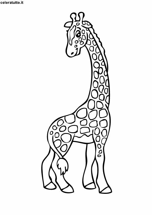Giraffa Disegni Per Bambini Da Colorare