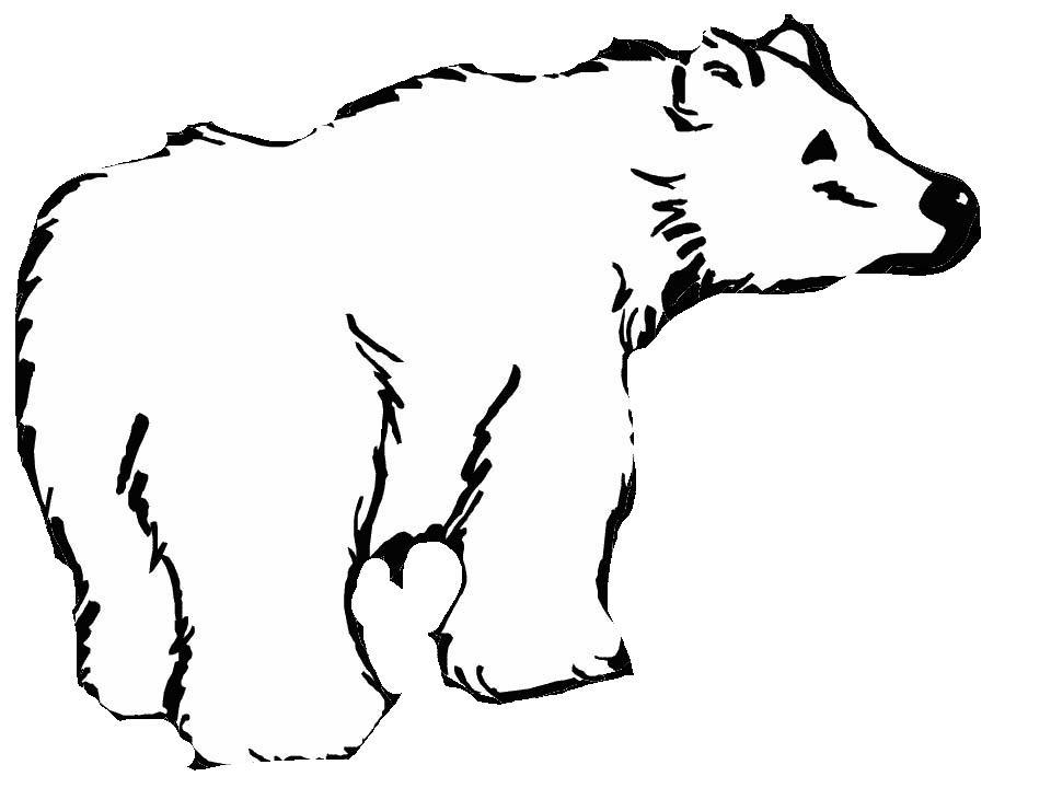 Orsi 2 disegni per bambini da colorare for Disegno orso per bambini
