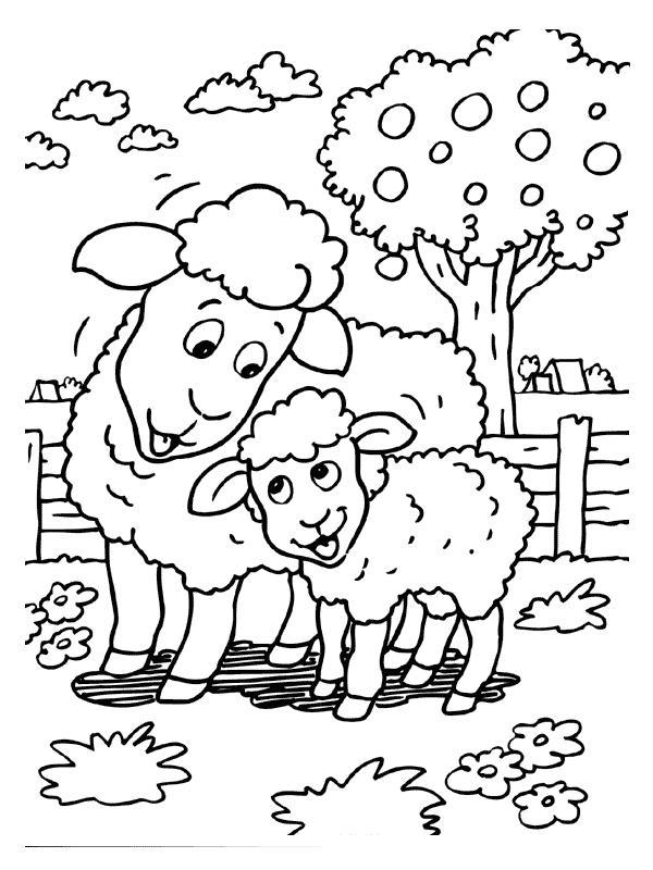 Pecorelle disegni per bambini da colorare for Disegni per mosaici da stampare