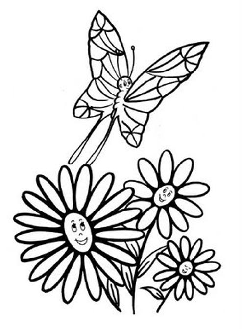 Disegni Di Primavera Da Colorare E Stampare Per Farfalle Da Colorare