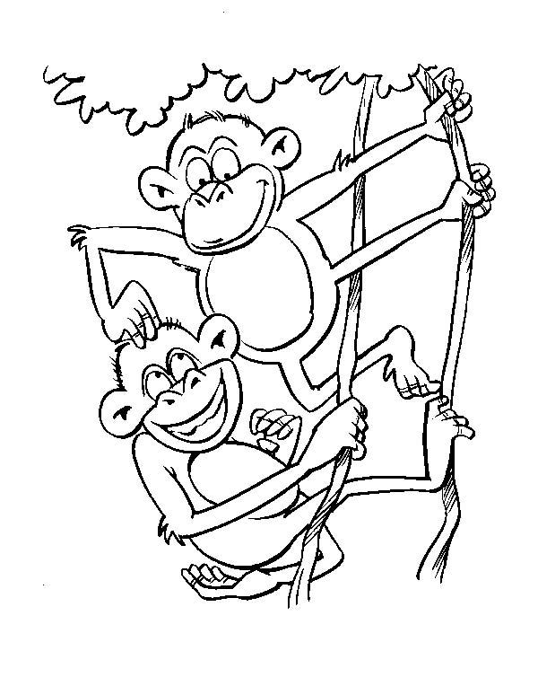Scimmie 3, Disegni per bambini da colorare