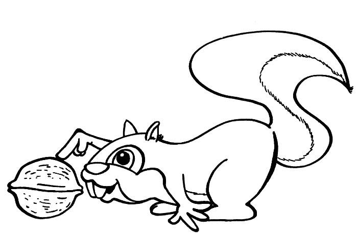 Scoiattolo 4 Disegni Per Bambini Da Colorare Three Kittens Coloring Page