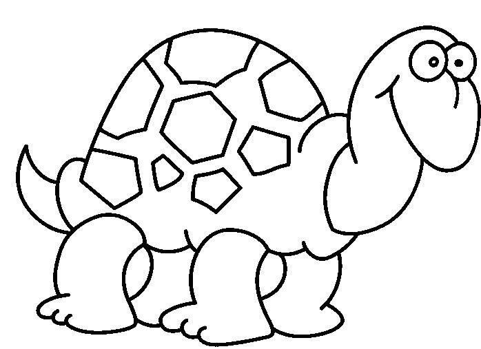 Tartarughe Disegni Per Bambini Da Colorare